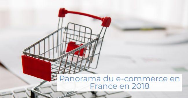 Illustration du Panorama du e-commerce en France